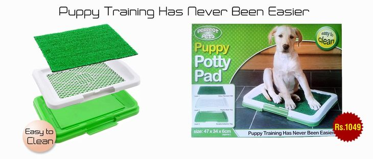 Puppy Potty Training Pad