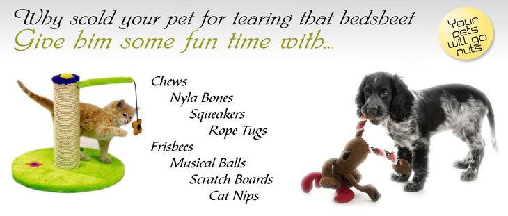 Pet Toys Banner