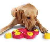 Petsgonuts Multi Functional Paw Shaped Puzzle Bowl Feeder Dog Toy, red