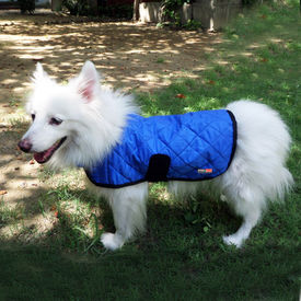 Hydro Kyle Dog Cooling Coat for Medium Breed Dogs, blue, medium