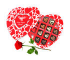 Fancy Choco Treat Chocolates With Red Rose - Chocholik Belgium Chocolates