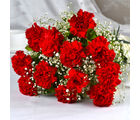 Giftacrossindia Bouquet of Dozen Red Carnations (GAIMPHD0002), 1000 gms