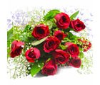 Giftacrossindia Bunch of Fresh 12 Red Roses (GAIMPHD0573), 1000 gms