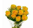 Giftacrossindia Ten Yellow Roses Hand Tied (GAIMPHD0540), 1000 gms