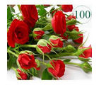 BAF 100 Red Roses Gift, free shipping