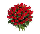 Primo Gifts Elegent Roses