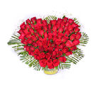 Primo Heart Shape Roses for You (PRE93)