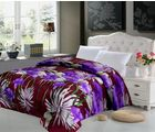 Story At Home 1 Double Bed Comforter, multicolor