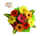 Flora Online Colorfull Gerberas Bunch