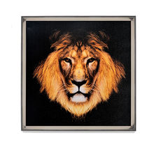 Lion Picture Painting 60 x 60 - @home By Nilkamal, Black & Brown