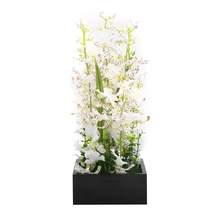 White Orchid Potted Plant in Black Red Frame - @home by Nilkamal