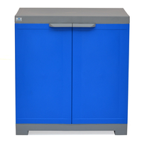 Nilkamal Freedom Mini Small Storage Cabinet FMS, Dark Blue / Grey