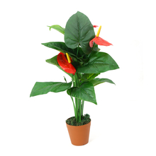 Anthurium Tree with Pot - @home by Nilkamal, Red