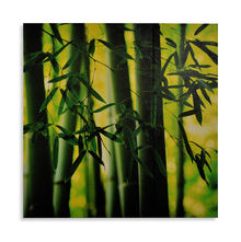 Bamboo Set Of 3 Picture Painting 30 x 90, Olive - @home By Nilkamal
