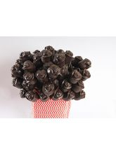 THF Chocolate Roses-Pack Of 100