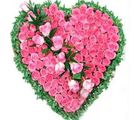 India Gifts Hub Pink Roses Heart 50 Flowers (IGHFLOW038)