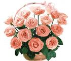 India Gifts Hub Peach Roses Basket 24 Flowers (IGHFLOW080)