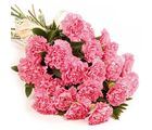 India Gifts Hub 12 Pink Carnation Bouquet (IGHFLOW119)