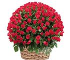 India Gifts Hub 500 Red Roses Basket (IGHFLOW027)