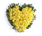 India Gifts Hub Yellow Roses Heart 50 Flowers (IGHFLOW007)