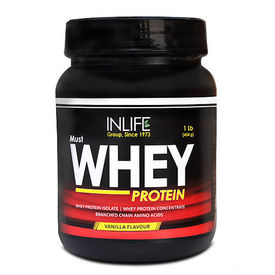 InLife Whey Protein 1Lb, chocolate