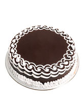 Ferns N Petals Chocolate Cake Eggless (MN-ELChocol...